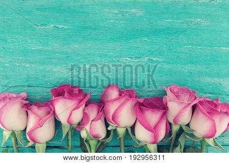 Frame Of Pink Roses On Turquoise Rustic Wooden Background With Copy Space For Message. Greeting Card