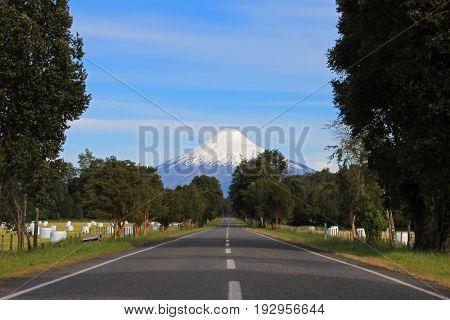 Road leading to Osorno Volcano, Patagonia, Chile, South America