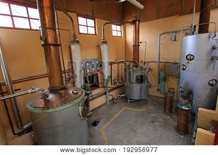 Pisco production at factory, Elqui Valley, Chile, South America