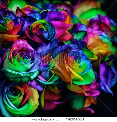 Colourful of Rainbows roses for a special day.