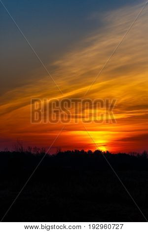Vertical image of a colorful Wisconsin sunrise with a silhouette of trees