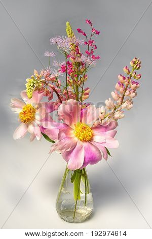 still life bouquet of tree-like peony and lupine flowers