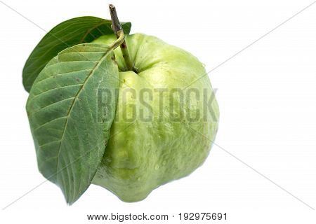 Guava with guava leaves on white background