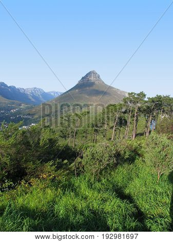 VIEW OF LIONS HEAD, WITH TREES AND OTHER VEGETATION IN THE FORE GROUND 33lou