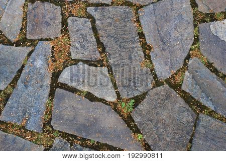 Photo of the stone road background texture