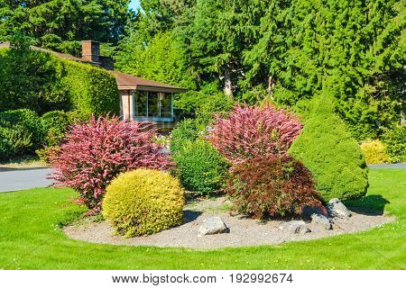 Decorative landscape in front of house buried in verdure