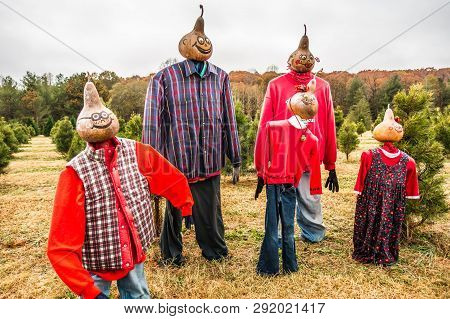 Christmas Tree Farm Dressed Scarecrows For Holidays
