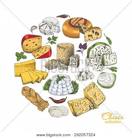 Vector Background With Cheeses In Sketch Style