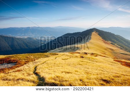 Majestic panorama of mountains in sunny day. Location place Carpathian mountain, Ukraine, Europe. Scenic image of National Park, natural reserve. Attractive summer scene. Discover the beauty of earth.