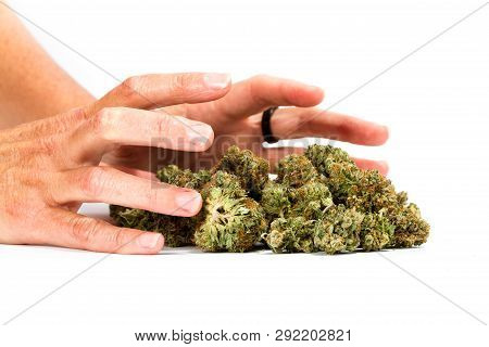 Grabbing Pot Buds