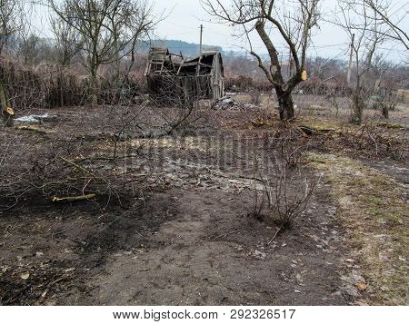 Destroyed Wooden Hut In The Depths Of The Spring And Autumn Garden With Leafless Trees. Landscape Of