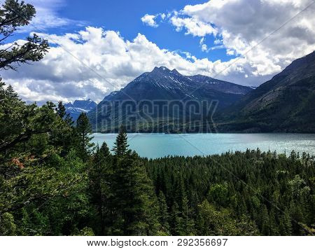 A view of a majestic turquoise lake surrounded by vast green evergreen forests and mountains on a sunny day with blue sky.  This is Waterton Lakes, surrounded by the Rockies, in Alberta, Canada. poster