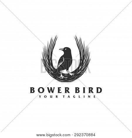 Bower Bird Logo Design Concept Illustration. Good For Any Industry.