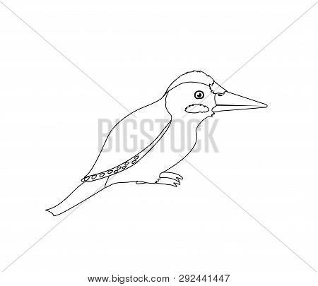 Vector Line Cartoon Animal Clip Art Green Woodpecker