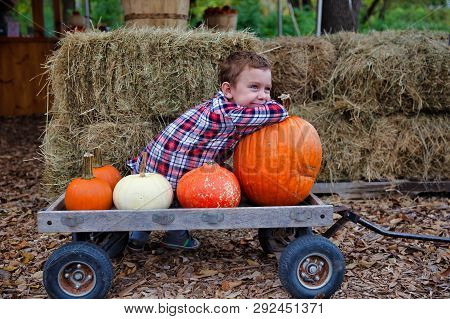 Happy Boy On A Farm With Pumpkins. Pumpkin Patch. The Child Sitting On A Wooden Carriage With Pumpki