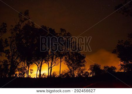 A Bushfire, Forest Is Really Bright Because Of The Fire, Litchfield National Park, Australia