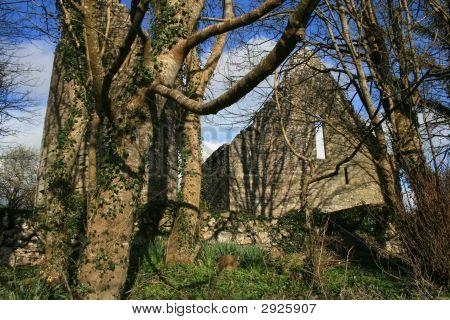 Old Irish Chruch Ruins