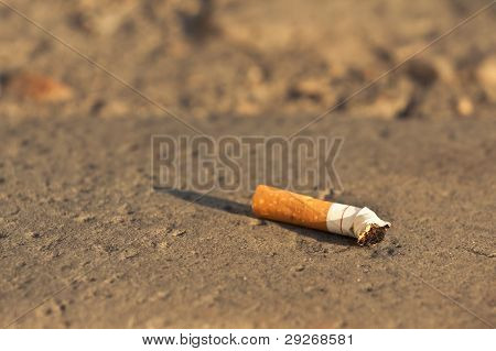 Cigarette Fag Thrown In The City