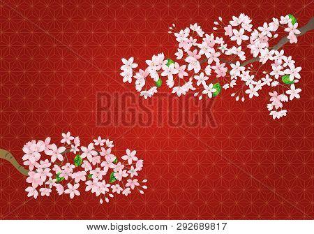 Pink Sakura Flower On Red Vintage Background