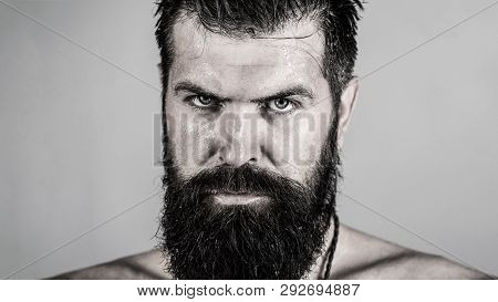 Handsome Brutal Male. Portrait Of Masculinity. Portrait Brutal Bearded Man. Sexy Closeup Portrait Of