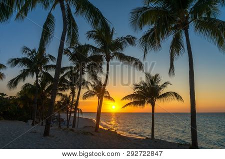 Varadero Beach Sunset with Palm Tree Silhouettes. Cuba Vacation Background with Setting Sun.