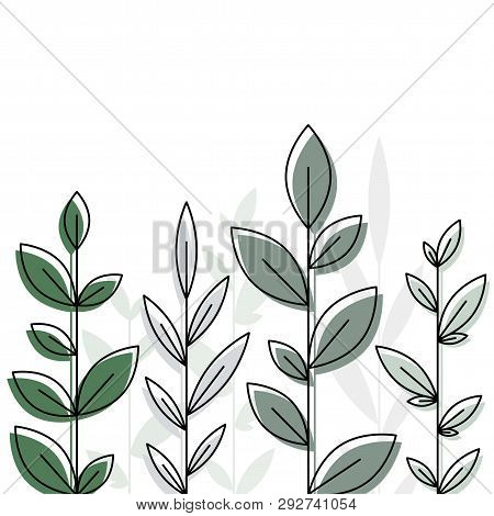 Botanical Design Element Whith Branches. Vector Background. Eps 10
