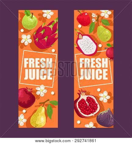 Tropical Fruits Set Of Banners Vector Illustration. Exotic Summer Products Such As Mangosteen, Apple