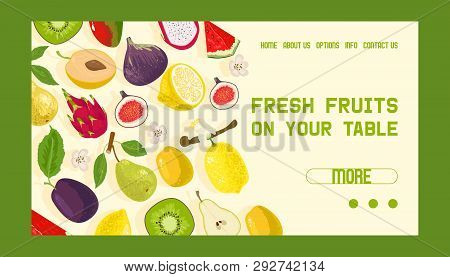 Tropical Fruits Shop Banner Web Design Vector Illustration. Exotic Summer Products Such As Mangostee