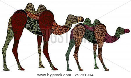 ornamented camels