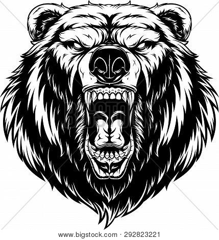 Vector Illustration, Head Of A Ferocious Grizzly Bear, Contour On A White Background