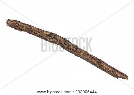 Single dry tree branch, isolated on white background. Stick tree branch from nature for design.