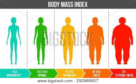 Creative Vector Illustration Of Bmi, Body Mass Index Infographic Chart With Silhouettes And Scale Is
