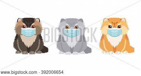 Domestic Cats In Medical Masks. Set Of Illustrations Of Three Persian Cats In Different Colors Weari