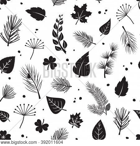 Leaf Tree Vector Seamless Pattern, Plant Print Fir And Pine Cone, Evergreen, Leaves Different Shapes