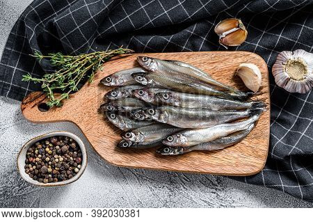 Fresh Raw Sea Small Fish Smelt. Gray Background. Top View
