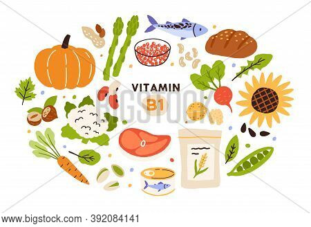 Collection Of Vitamin B1 Sources. Food Containing Thiamin. Bread, Nuts, Vegetable, Meat, Fish, Cavia