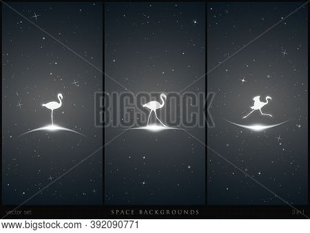 Lonely Flamingo In Space. White Silhouette Of Running Endangered Bird. Black And White Vertical Back