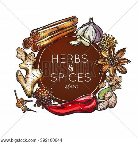 Colored Spice And Herb Store Emblem With Spices For Use In Different Dishes Vector Illustration