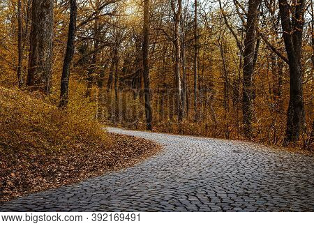 Autumn Park With A Stone Paving Road.