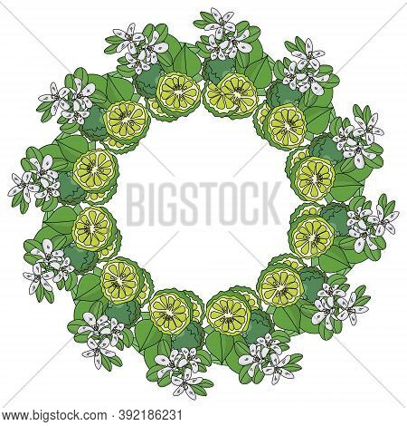 A Wreath Of Leaves, Flowers And Bergamot Fruits, Fragrant Citrus Used To Flavor Tea, Green Plants Wi