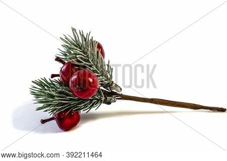 Christmas Shiny Twigs With Berries And Nuts, Ornament For A Christmas Tree, Holiday Decorations Isol