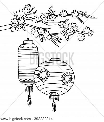 Two Chinese Paper Lanterns Hanging On The Tree Brunch With Blooming Flowers. Hand Drawn Vector Sketc