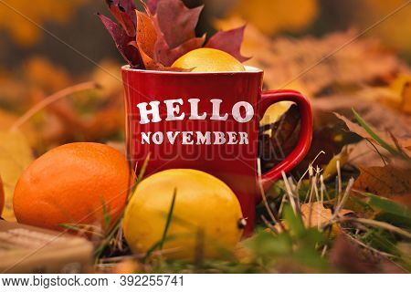 Words Hello November Written On Red Mug. Selective Focus And Noise. Shallow Depth Of Field On The Mu
