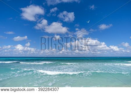 Beautiful Tropical Landscape With Turquoise Ocean. Horizon Line On The Background. Endless Clear Blu