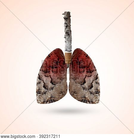 Stop Sign On Half Cigarette Pack On Half Earth,may 31st, World No Tobacco Day, Stop Smoking, World D