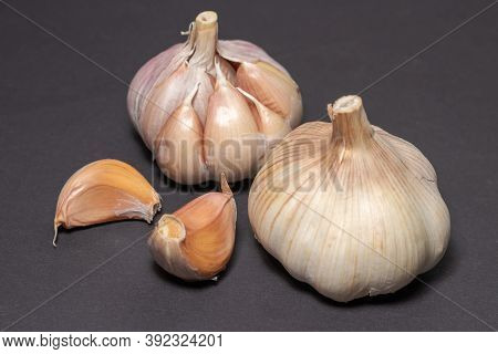 Garlic Clove Cloves Healthy Spice On A Darck Background.