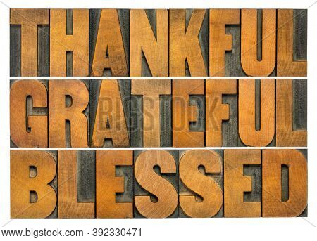 thankful, grateful and blessed - isolated word abstract in vintage letterpress wood type, Thanksgiving theme and greeting card