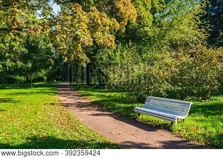Green Park, Walkway In The Middle And White Bench In The Corner. Photo A Park With A Bench, A Summer