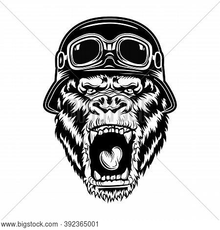 Angry Gorilla Vector Illustration. Head Of Roaring Animal Wearing Bikers Helmet. Riding Bike Concept