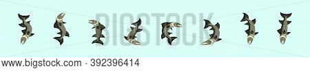 Set Of Barracuda Fish Cartoon Icon Design Template With Various Models. Vector Illustration Isolated